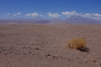 """Nos premiers pas dans le """"Salar de Atacama"""", le désert de sel."""