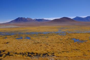Les lagunes gelées s'étendent devant les volcans