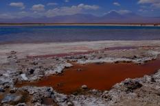 Lagune salée