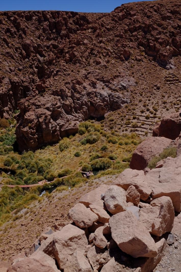 Les thermes vus de haut. La végétation a les racines das l'eau chaude. Mais faut pas se plaindre, autour c'est le désert!