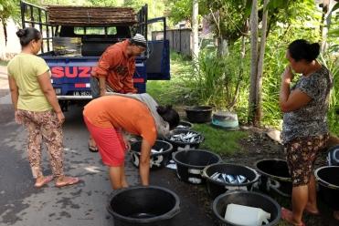 Après la pêche, la vente, au bord de la route. Les femmes se chargent de marchander.