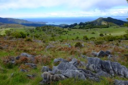 Montagne néo-zélandaise